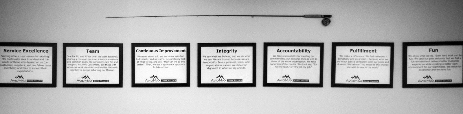 AvidMax core values